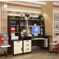 Кабинет, мебель офисная для работы, учебы, отдыха
